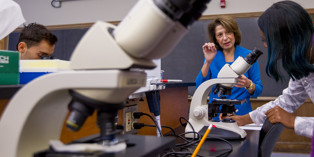 Professor Ioanna Visviki does research with students, a microscope is in the foreground.