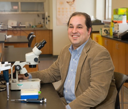 Mount Professor James Fabrizio Awarded Grant from National Institutes of Health