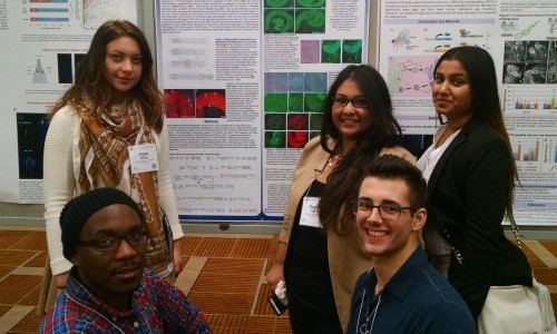Five College of Mount Saint Vincent Student Researchers Present Poster at Drosophila Research Conference