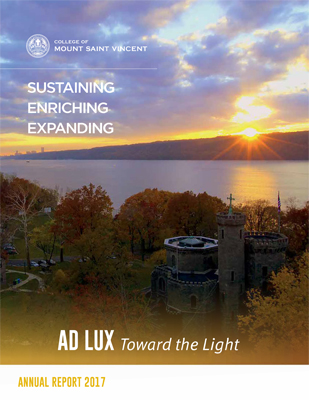 Cover of the Annual Report 2017 depicting an image of the sunset over the Hudson River.