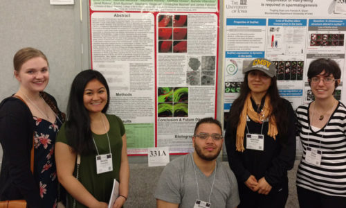 Mount Students Present at Prestigious Research Conference