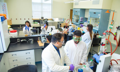 Nearly $1 Million Awarded to Mount Saint Vincent to Enhance STEM Student Success
