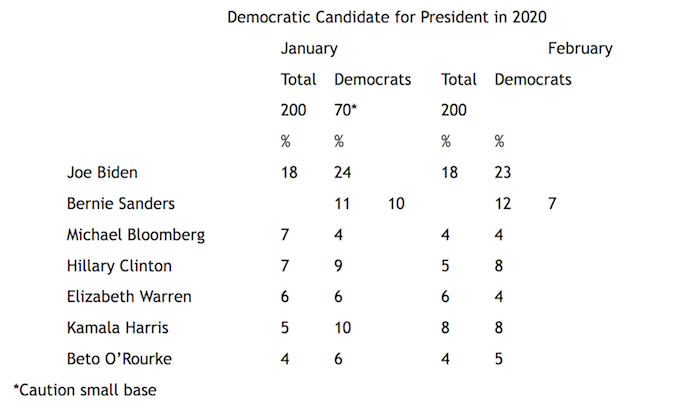 """Graphic titled: """"Democratic Candidate for President in 2020"""""""