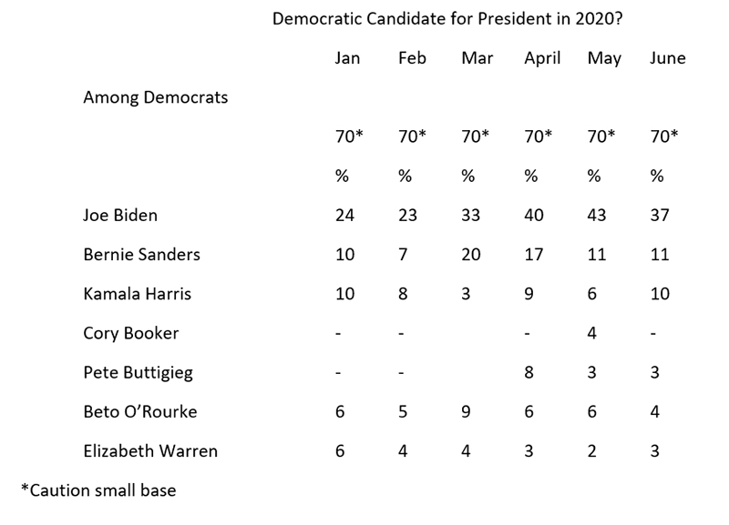 "Graphic titled: ""Democratic Candidate for President in 2020?"""