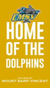"""Graphic saying """"Home of the Dolphins"""""""