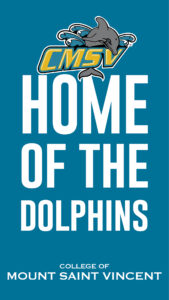 """Graphic called """"Home of the Dolphins"""""""