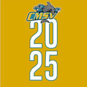 """Graphic called """"CMSV 2025"""""""